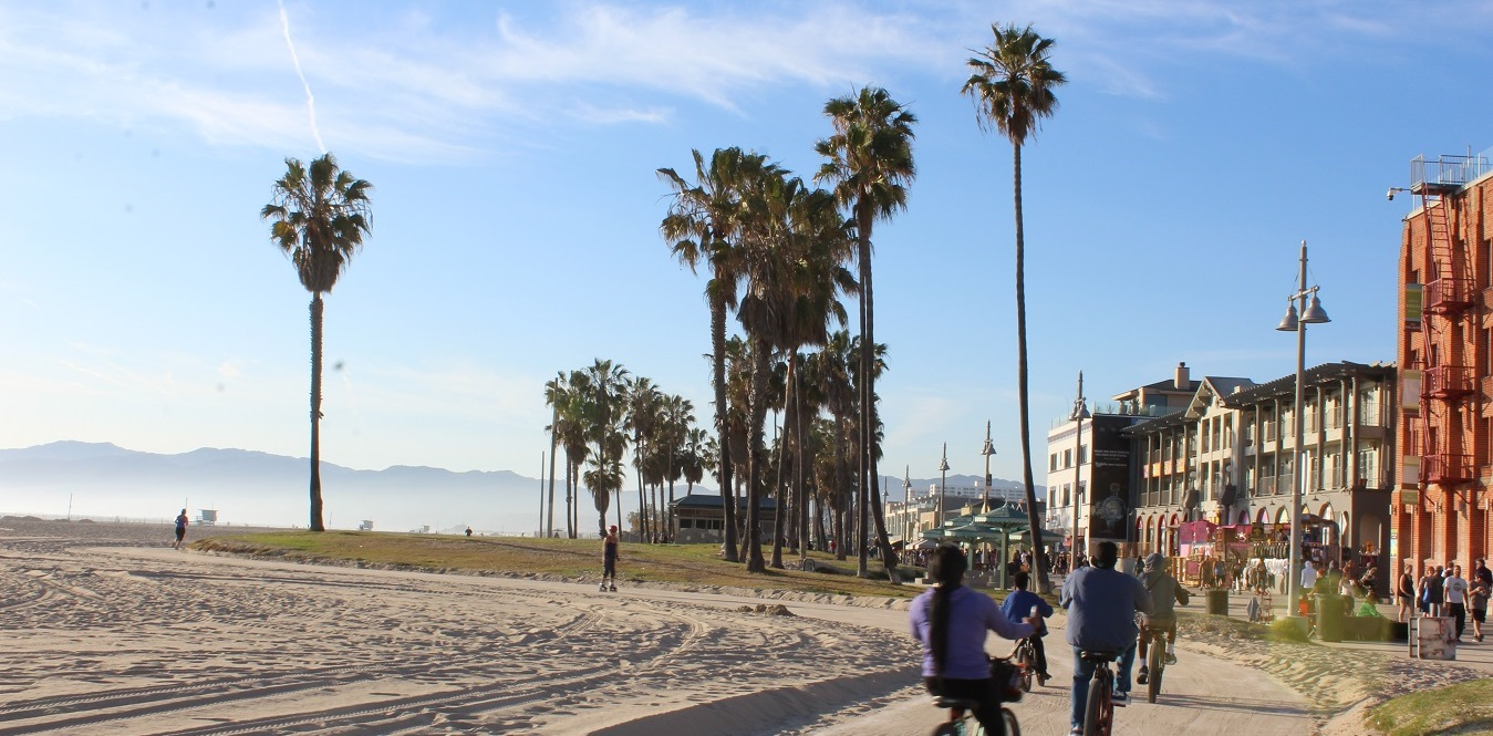 zambiese venice beach - photo#8